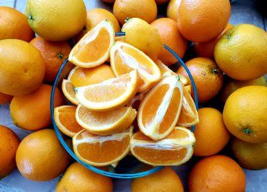 Nutrition-Whole Foods & Plants